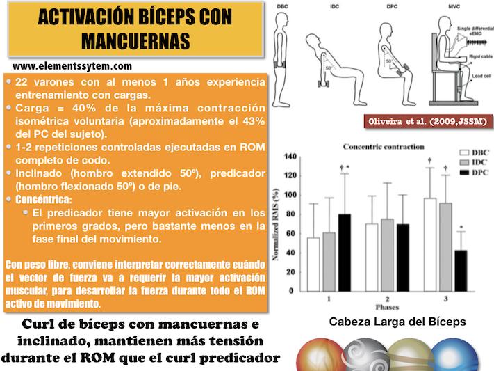 ENTRENAMIENTO DE BÍCEPS: VARÍA LA ANGULACIÓN