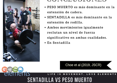 sentadilla vs peso muerto4 copia