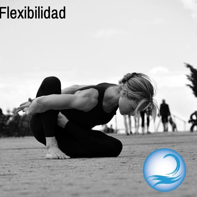 8.- Flexibilidad