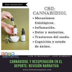 CANNABIDIOL Y RECUPERACIÓN 2